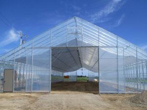 大型ビニールハウス 農業用