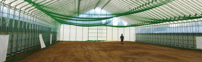 多目的パイプハウス 野球練習場